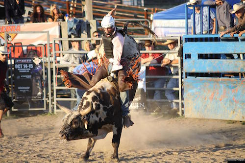 Pro Bull Riding | Honoring The American Cowboy 2020 – June 27th